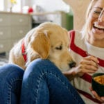 3 Steps to Curbing Your Dog's Picky Eating Behavior