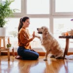 3 Tips to Help Your Dog Stay Fit in 2021!